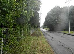 工場敷地内の緑地管理