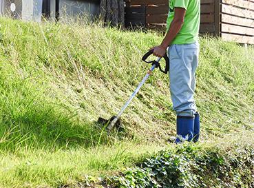 草刈り・伐採・伐根