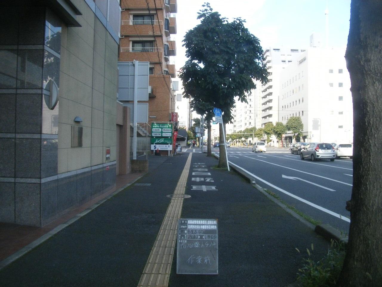 街路樹管理業務